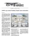 2010-0128_Examiner