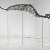 Tim Hawkinson: Leviathon, 2009